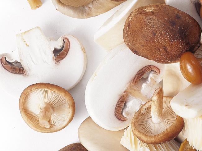 Moet je champignons borstelen, spoelen of wassen?