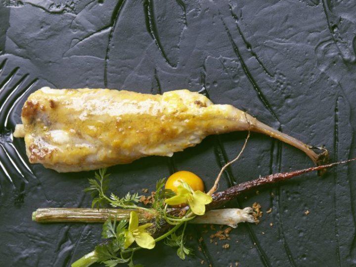 Gelakte zeeduivel, curry, wortel en lente-ui