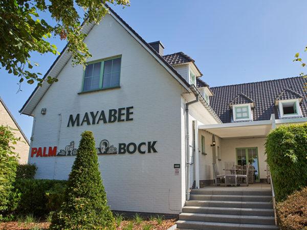 Mayabee uitgelicht